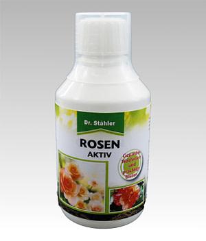 Rosen Aktiv Dr Stähler