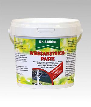 Weissanstrich Paste Dr Stähler