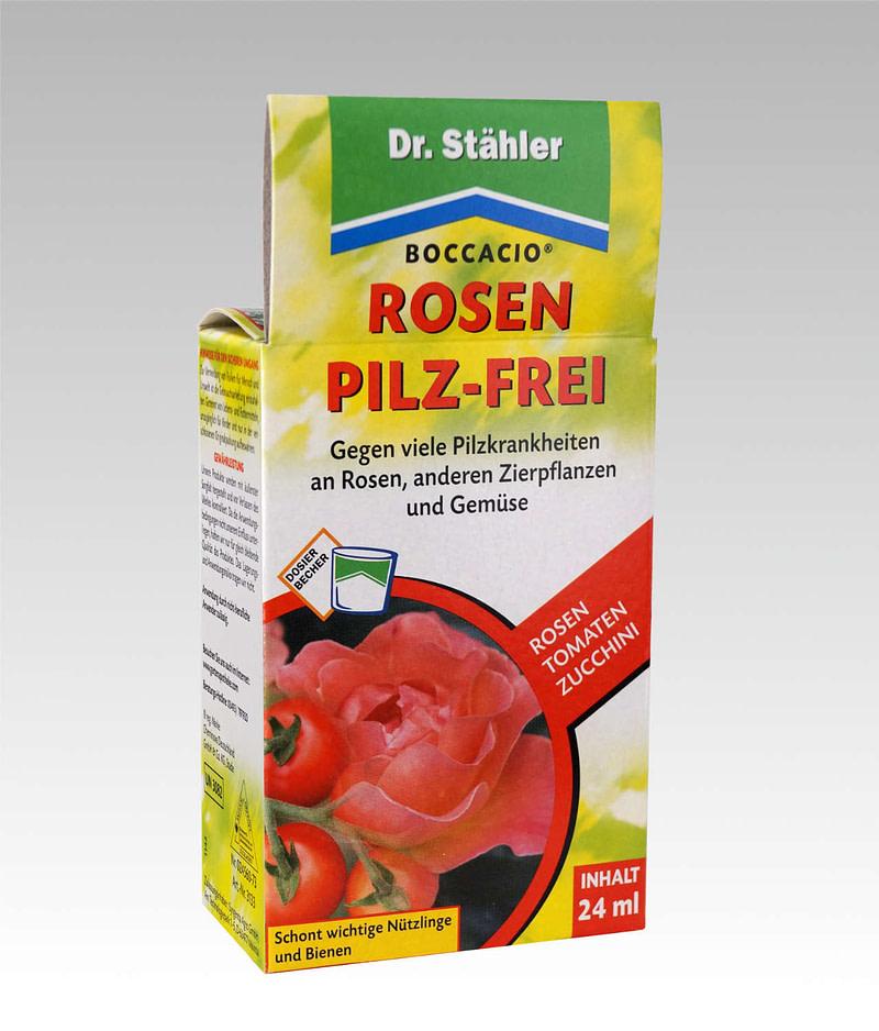 Boccacio Rosen Pilz Frei Dr Stähler